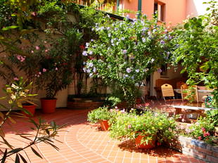 Viennas best Hostel has a beautiful Garden to relax your Soul after Traveling