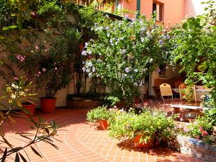 ウィーンで最も居心地のいいホステルの美しい庭は旅の疲れを癒します