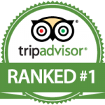 tripadvisor number one in vienna